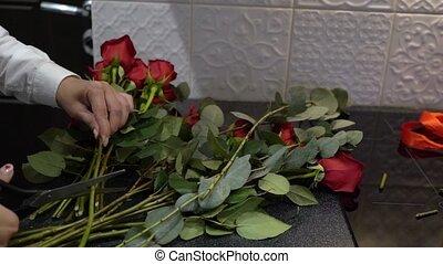 scissors., taille, fleurs, femme, jeune, découpage, roses rouges