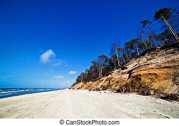 scogliere, su, uno, soleggiato, spiaggia