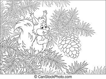 scoiattolo, piccolo, cono, grande