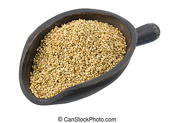 sesame seeds on a primitive, wooden, dark painted scoop; isolated on white, clipping path included