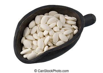 scoop of white dietary supplement pills