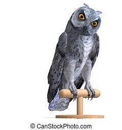 Scops Owl Bird. 3D rendering with clipping path and shadow over white
