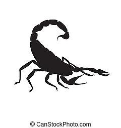 scorpio., vector, apresuramiento, ilustración
