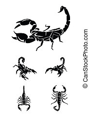 scorpion, collection, ensemble