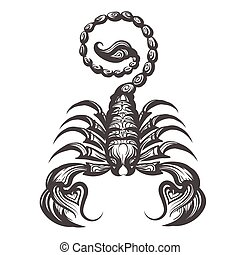Scorpion drawn in engraving style. Vector illustration.