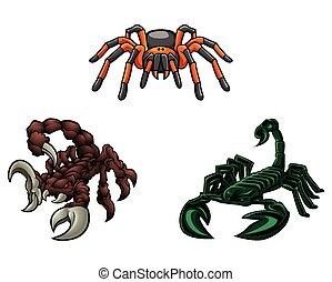 scorpion, et, tarentule