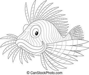 scorpion fish - Sea scorpion swimming, black and white...