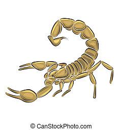 Scorpion isolated on white background, vector illustration.