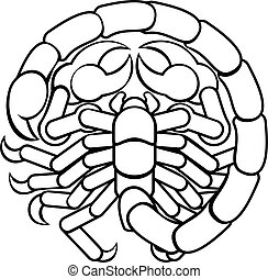 scorpion, scorpion, astrologie, horoscope, zodiaque, signe