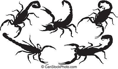 Scorpion Silhouette on white background