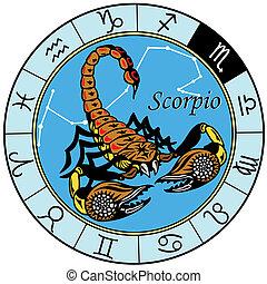 scorpion zodiac - scorpion or scorpio astrological zodiac...