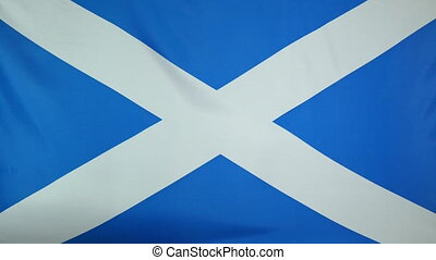 Scotland Flag real fabric close up - Textile flag of...