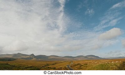 Scotland highlands landscape - group of Sheep in mountains -...
