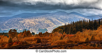 scotland - A photography of a typical scottish landscape