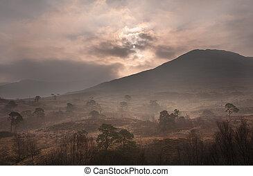 scottish dawn