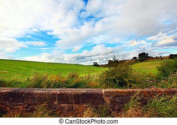Scottish landscape in Summertime