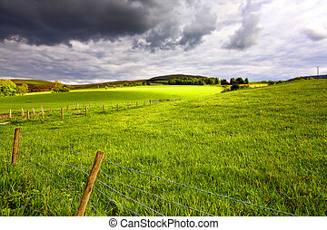 Scottish landscape with fields.