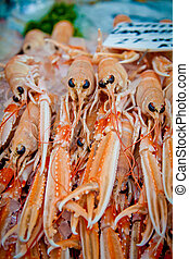 Scottish langoustines, a shellfish similar to lobster, for sale in Borough Market, London.