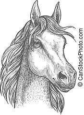 Scottish pony sketch for horse breeding design - Cute...