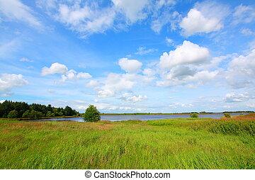 Scottish Summer landscape