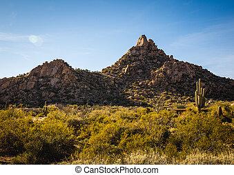 scottsdale, pinnacle spits, arizona