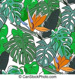scrapbooking., livre, impression, fabrication, monstera, feuilles, modèle, couvertures, seamless, cadeau, vecteur, papiers peints, jungle, emballer, exotique, flowers., textile, fond, ou