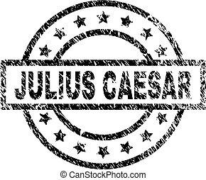 Scratched Textured JULIUS CAESAR Stamp Seal - JULIUS CAESAR...