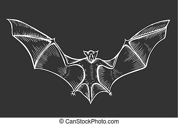 Screaming flying bat with extended wings, hand drawn vector...