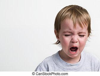 Screaming Toddler on white background