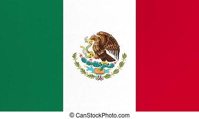 screen., zielony, channel., bandera, opening., meksykanin, ...