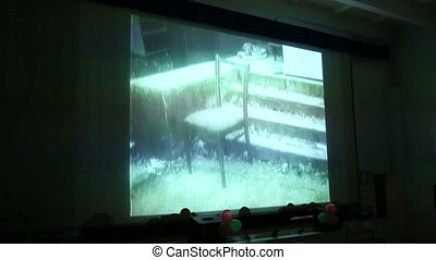 Screens in the audience