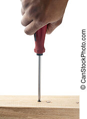 screw and screwdriver in wood