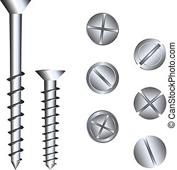 screw heads - two screws and several heads, vector...
