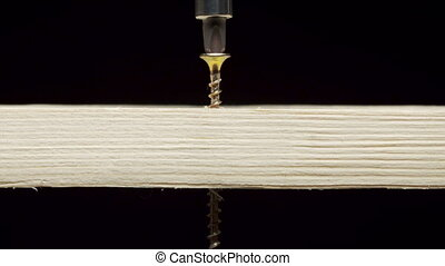 Screwdriver drilling tapping screw into a wooden board -...