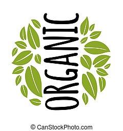 scrittura, bianco, leaf., vettore, iscrizione, illustrazione, organico, isolato