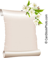 Scroll blank paper with blossoming cherry branch