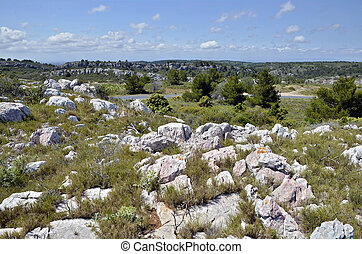 Scrubland near of Narbonne France - Scrubland near of ...
