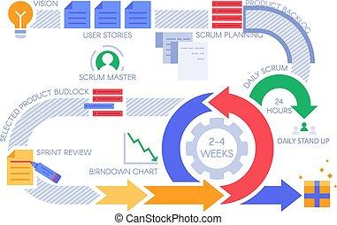 scrum, équipe, vecteur, gestion, infographic., projets, diagramme, méthodologie, projet, agile, illustration, flot travail, processus, développement