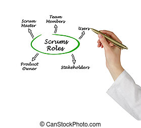 Scrums Roles