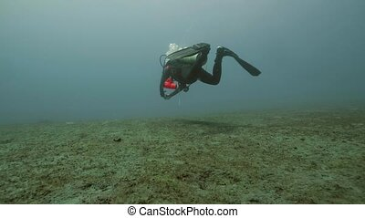 Scuba diver floating on sea bottom, underwater view. Deep...