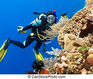 Scuba diver underwater close to coral reef