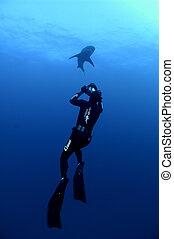Scuba Divers' Ascend - Scuba diver swimming after bull shark