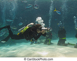 scuba divers, dále, ta, veličiny bariéra nános písku,...