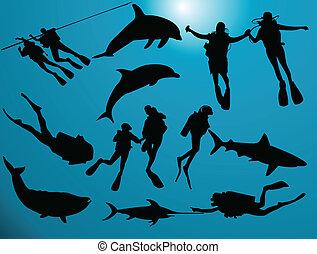 Scuba divers under the sea with sea animals