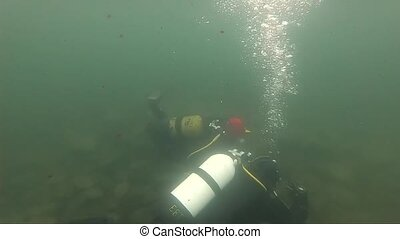 scuba divers explore the rocky bottom in shallow water....