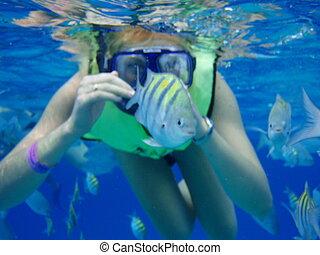 Scuba Diving in caribbean sea