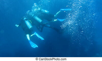 Scuba instructor with two students swims in Red sea,...