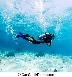 scuba, sylwetka, nurek, morze, dół
