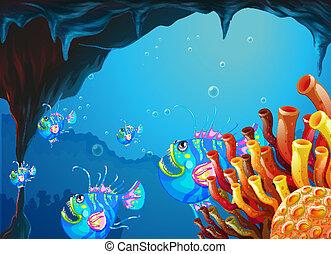 scuola, caverna, fish, mare, sotto