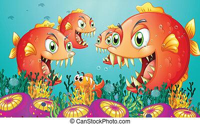 scuola, mare, piranha, sotto